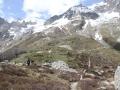 Ogród botaniczny Saussurea u stóp Monte Bianco
