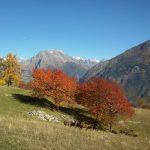 chwilotrwaj jesie nofilter gry wochy alpy lovemountains montagna mountains alpshellip