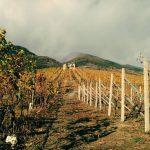 Colori di autunno in valleaosta aymavilles  Kolory jesieni whellip