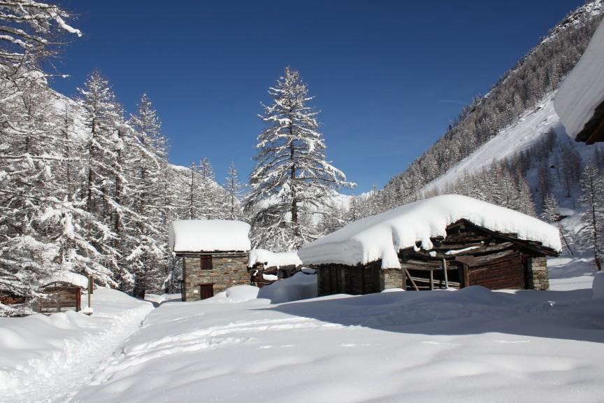 Park Narodowy Gran Paradiso, miejscowość Cogne - Valnontey. Szlak górski n. 9