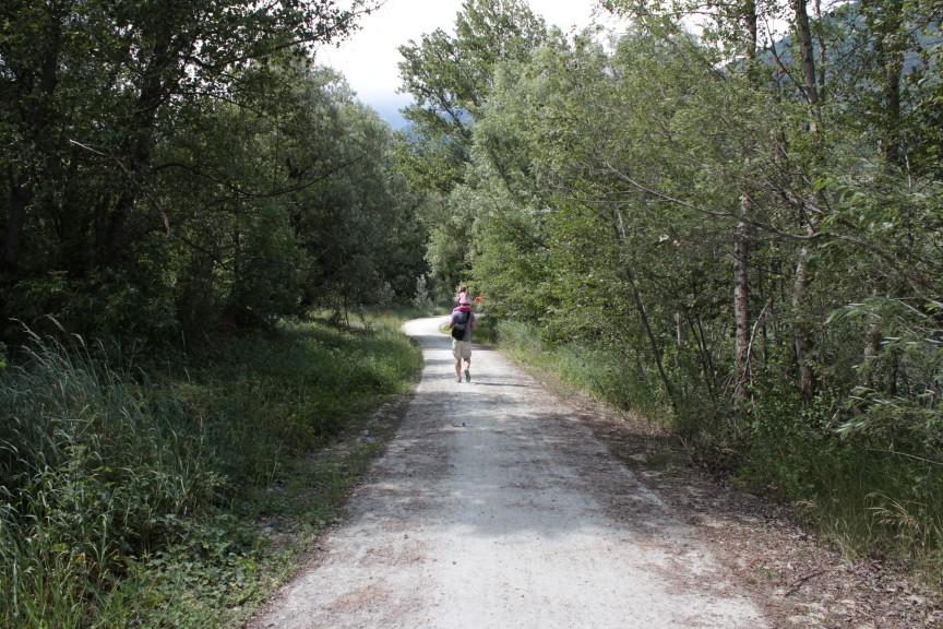 Trasa rowerowa biegnąca obok mokradeł