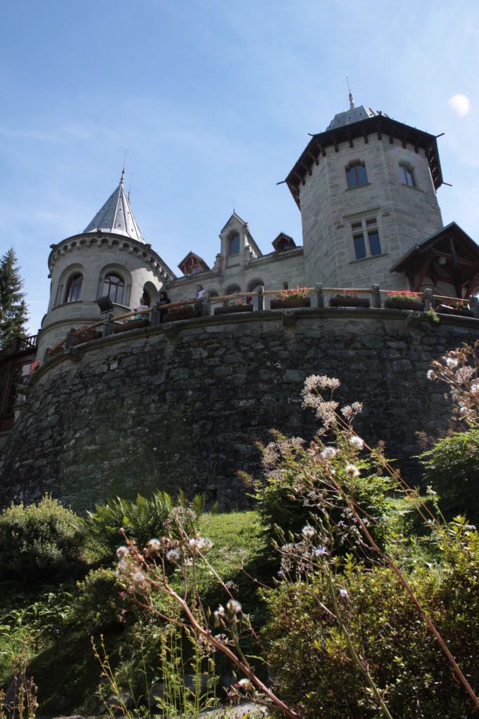 Zamek Savoia widziany z ogrodu botanicznego