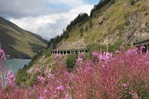 Droga na Wielką Przełęcz Świętego Bernarda po stronie szwajcarskiej. Na zdjęciu widoczny alternatywny dla przełęczy tunel oraz zapora wodna Les Toules