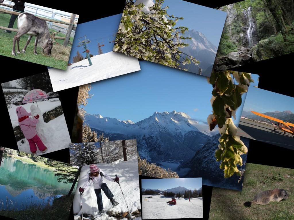 Alpy natura