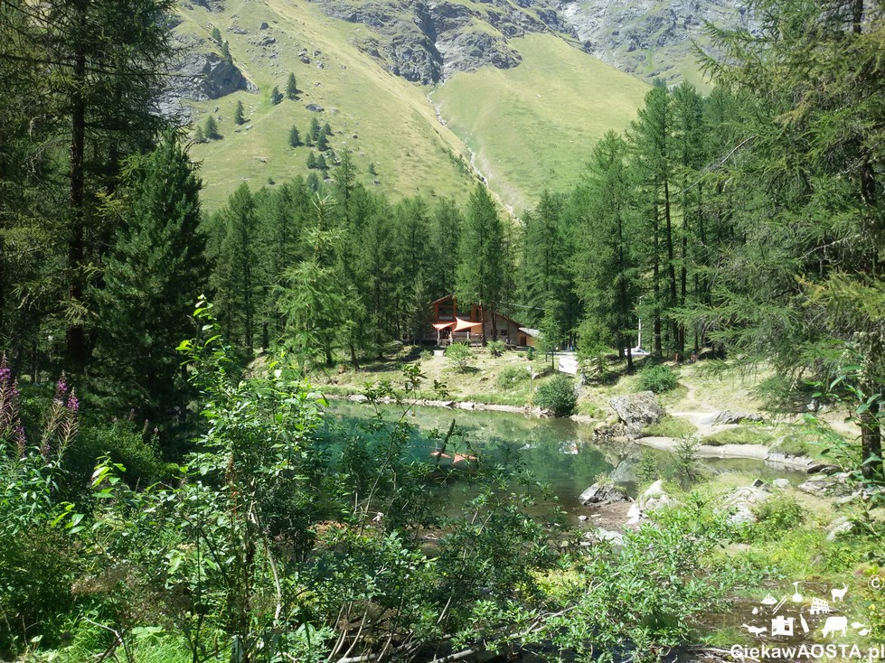 Zielona dolina Val di Rhemes