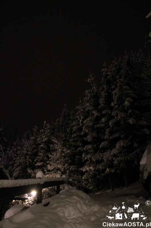 snieg alpy5