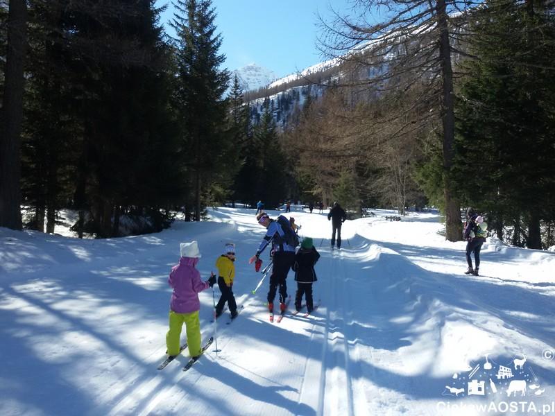 Trasa narciarska w Arpy.
