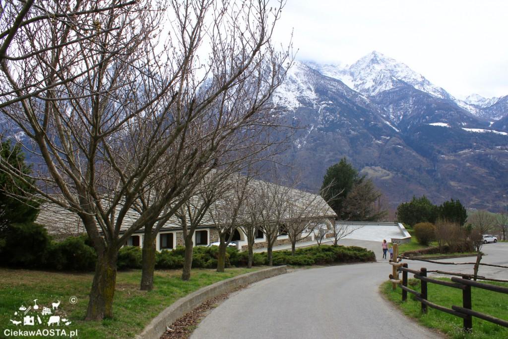 Klasztor widziany z zewnątrz.
