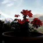 Nadal lato alps alpi mountains montagna aostavalley landscape panorama italyhellip