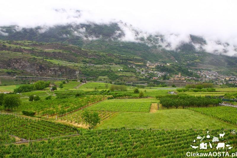 Widok na Valle d'Aosta ze szlaku winnego zwaloryzowanego w ramach projektu Vignes et terroirs Programu Włochy-Francja.