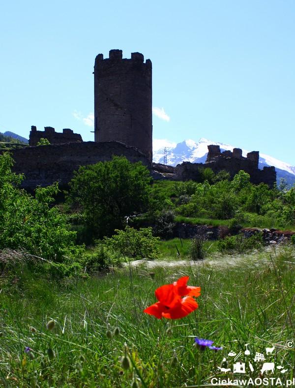 Ruiny zamku Châtel-Argent, do którego prowadzi prosty szlak (około 20 minut piszo od centrum Villeneuve).