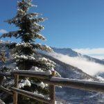 nevicata di stanotte in valledaosta ha portato tanta neve frescahellip