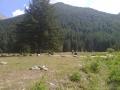 Dolina Clavalité