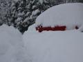 Oops, gdzie jest mój samochód?