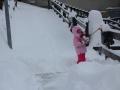 Pierwszy śnieg 2014