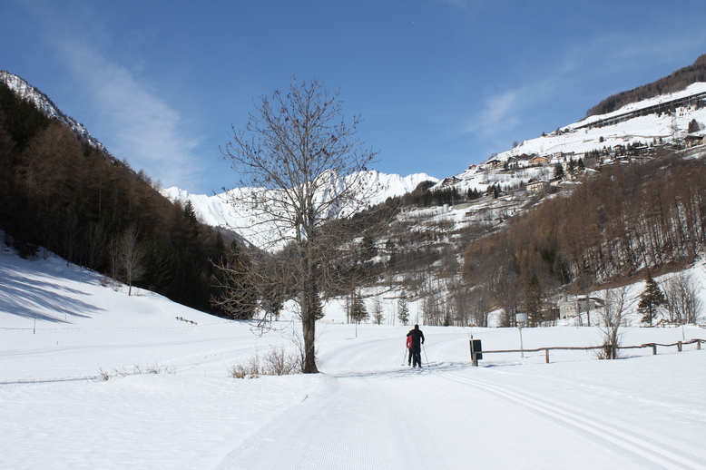 Ośrodek narciarstwa biegowego w miejscowości Flassin.