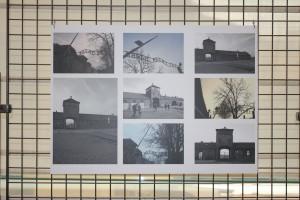 Wystawa Auschwitz – spojrzenia generacji post pamięci