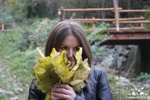 Valle Aosta autunno