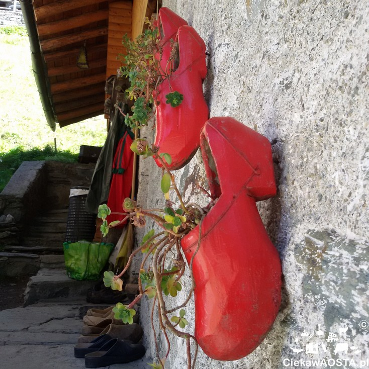 Valle Aosta5