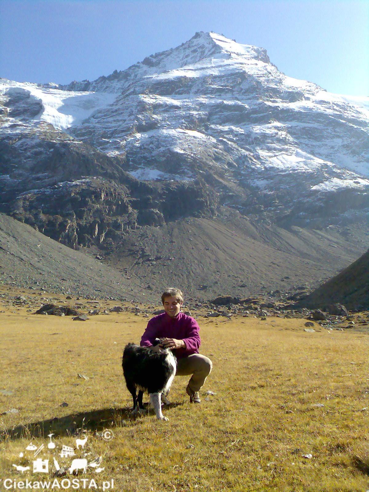U stóp Monte Grivola w wysokich Alpach.